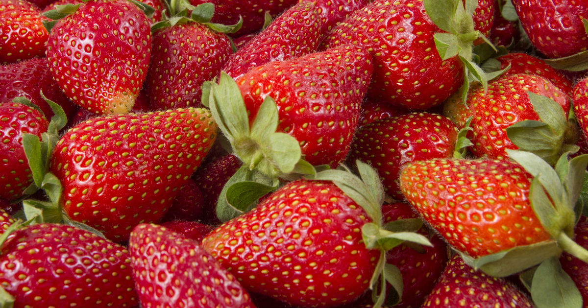 Make the most of strawberry season!