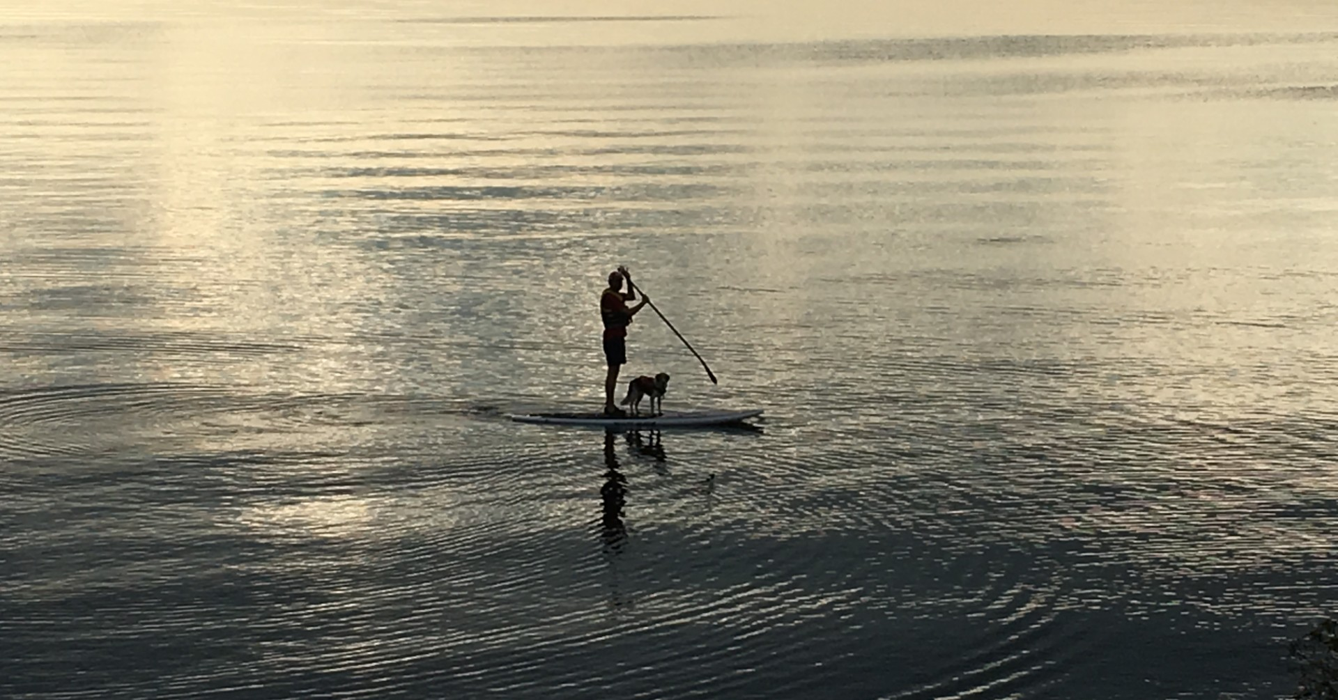 Dr. Joel Wood on a paddleboard